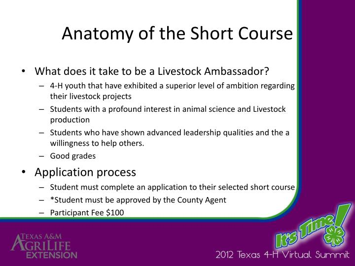 Anatomy of the Short Course