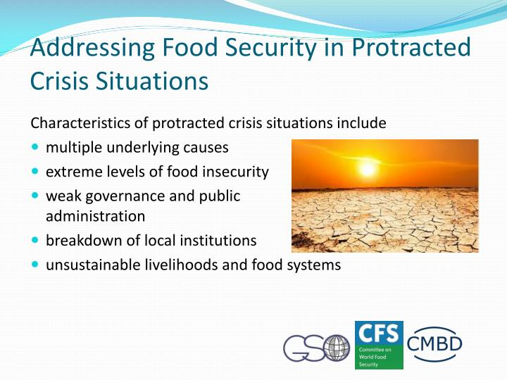 Addressing Food Security in Protracted Crisis Situations