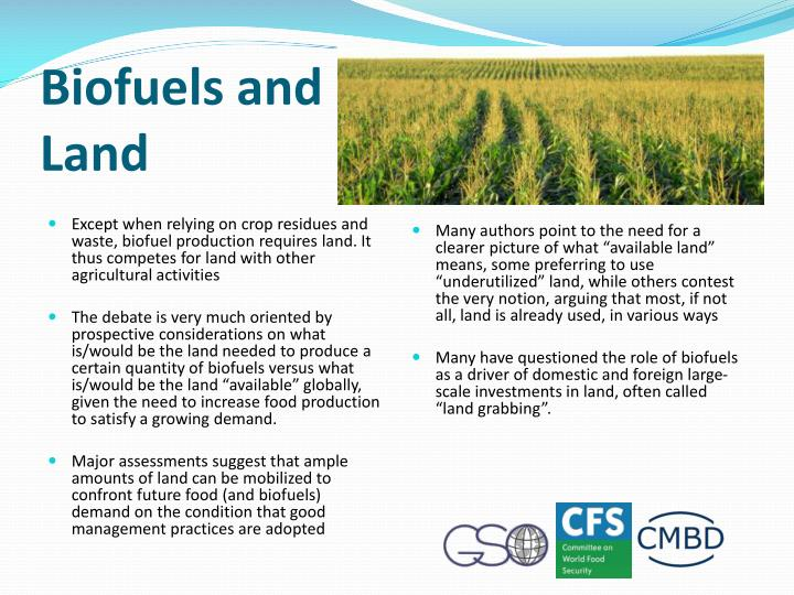 Biofuels and Land