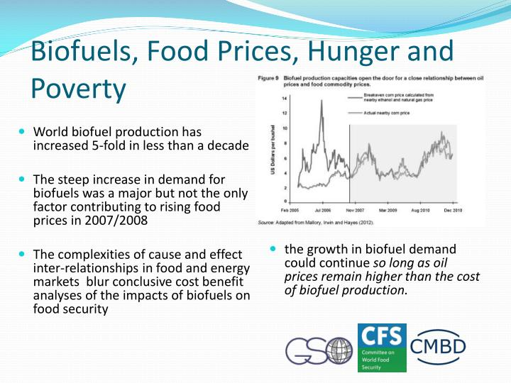 Biofuels, Food Prices, Hunger and Poverty