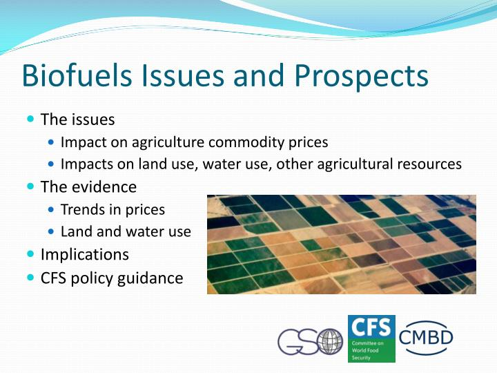 Biofuels Issues and Prospects