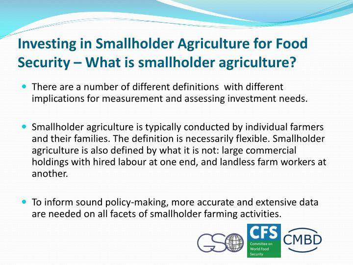 Investing in Smallholder Agriculture for Food Security – What is smallholder agriculture?