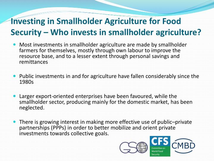 Investing in Smallholder Agriculture for Food Security – Who invests in smallholder agriculture?