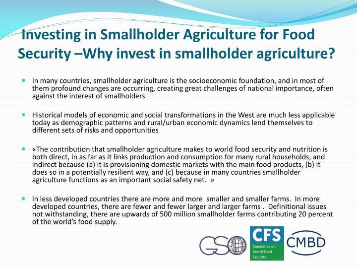 Investing in Smallholder Agriculture for Food Security –Why invest in smallholder agriculture?