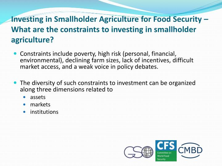 Investing in Smallholder Agriculture for Food Security – What are the constraints to investing in smallholder agriculture?
