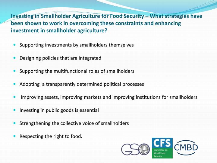 Investing in Smallholder Agriculture for Food Security – What strategies have been shown to work in overcoming these constraints and enhancing investment in smallholder agriculture?