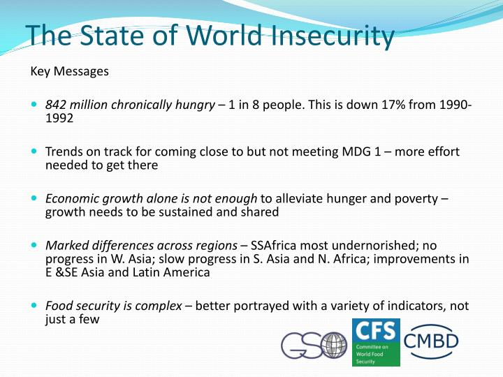 The State of World Insecurity