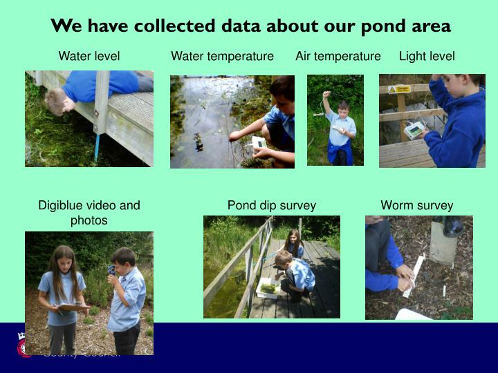 We have collected data about our pond area