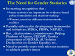 the need for gender statistics