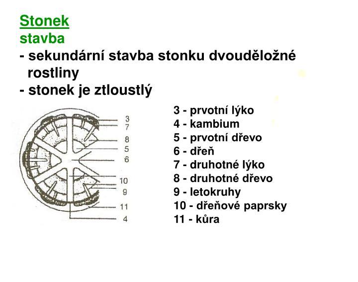 Stonek