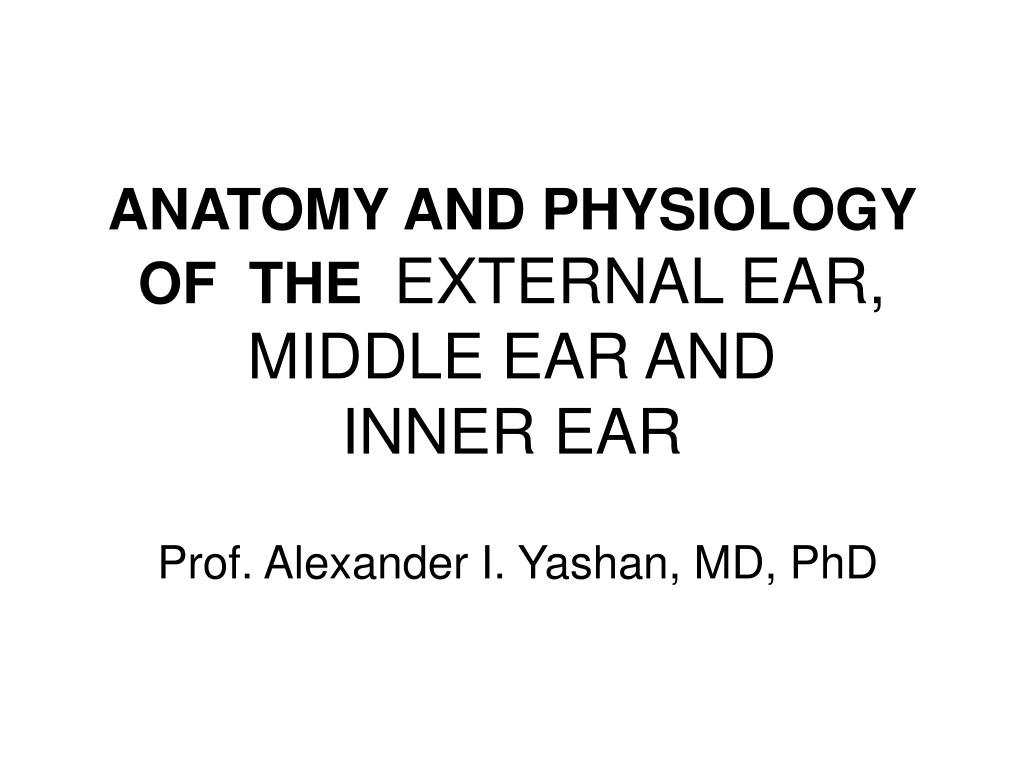 PPT - ANATOMY AND PHYSIOLOGY OF THE EXTERNAL EAR, MIDDLE EAR AND ...