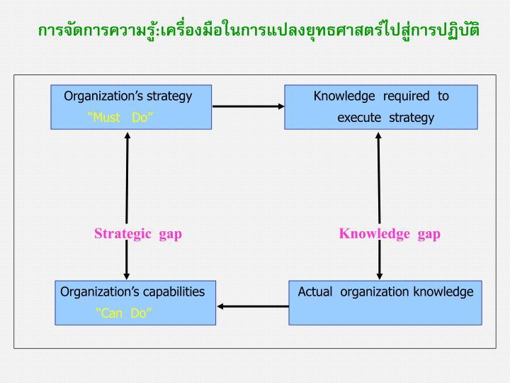 Organization's strategy