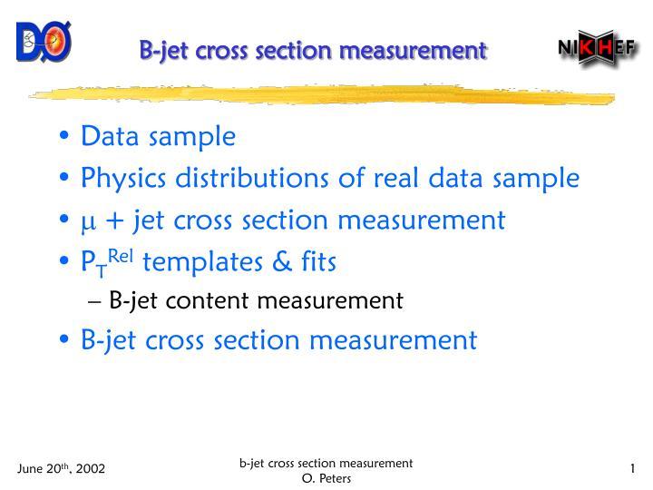 b jet cross section measurement n.