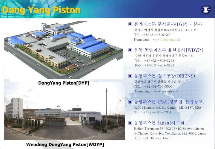 Dong Yang Piston