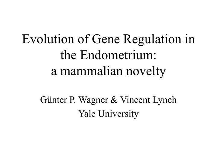 evolution of gene regulation in the endometrium a mammalian novelty n.