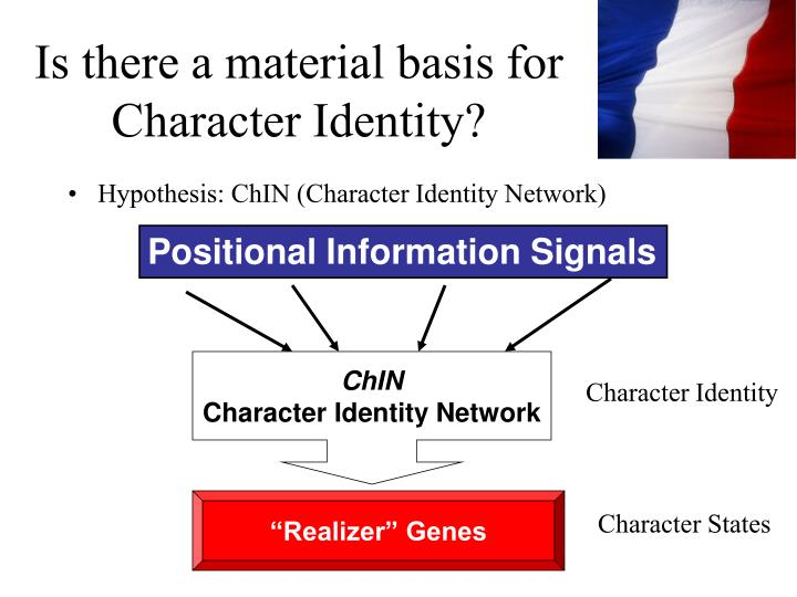 Is there a material basis for Character Identity?
