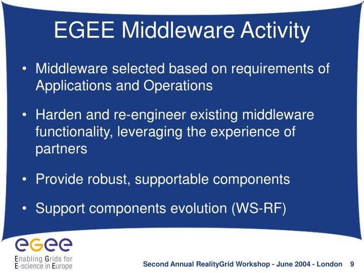 EGEE Middleware Activity