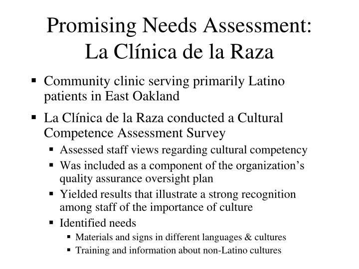 Promising Needs Assessment: