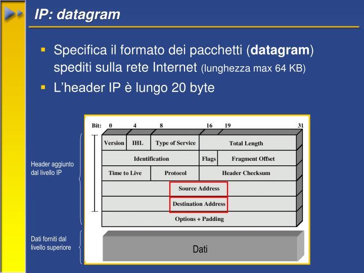 IP: datagram