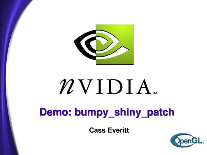 PPT - Demo: bumpy_shiny_patch PowerPoint Presentation - ID