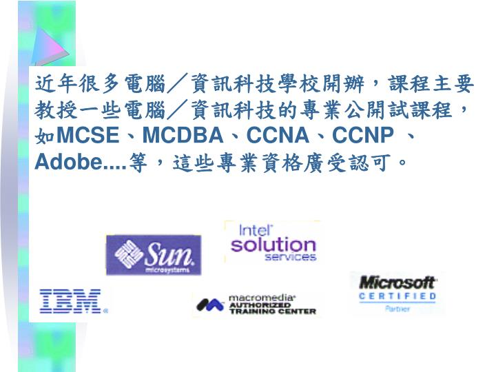 近年很多電腦/資訊科技學校開辦,課程主要教授一些電腦/資訊科技的專業公開試課程,如