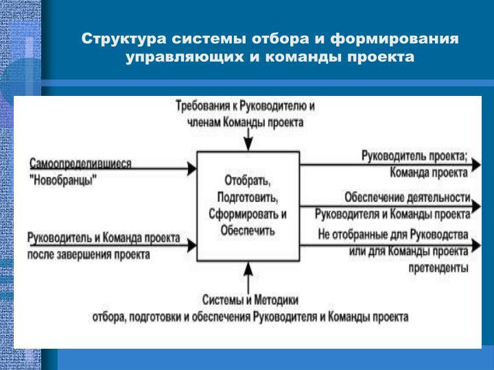 Структура системы отбора и формирования управляющих и команды проекта