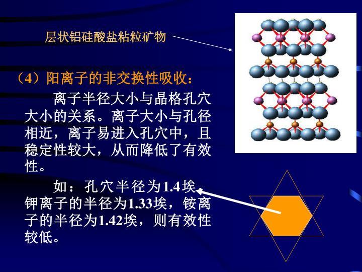 层状铝硅酸盐粘粒矿物