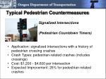typical pedestrian countermeasures1