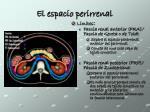 el espacio perirrenal1