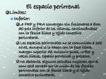 el espacio perirrenal3