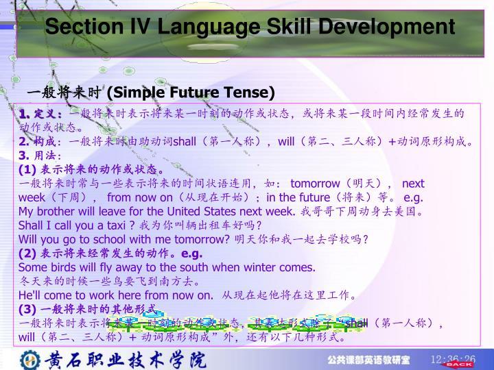 Section IV Language Skill Development
