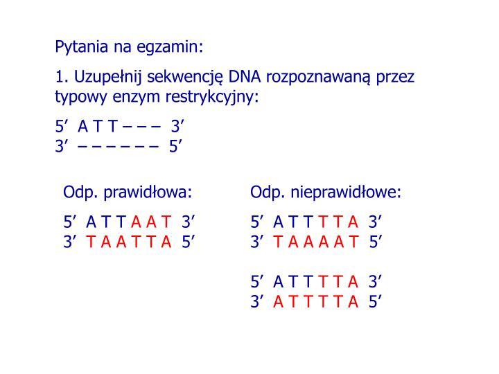 Odp. prawidłowa: