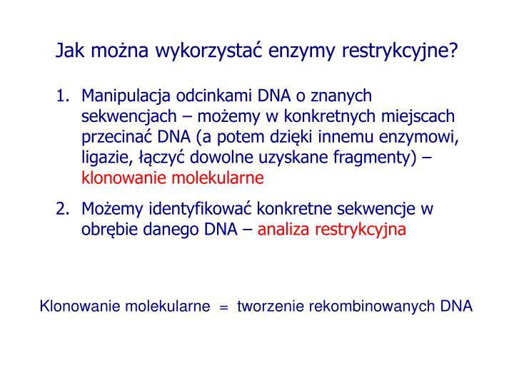 Jak można wykorzystać enzymy restrykcyjne?