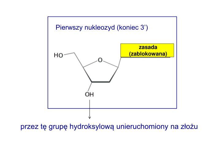 Pierwszy nukleozyd (koniec 3')