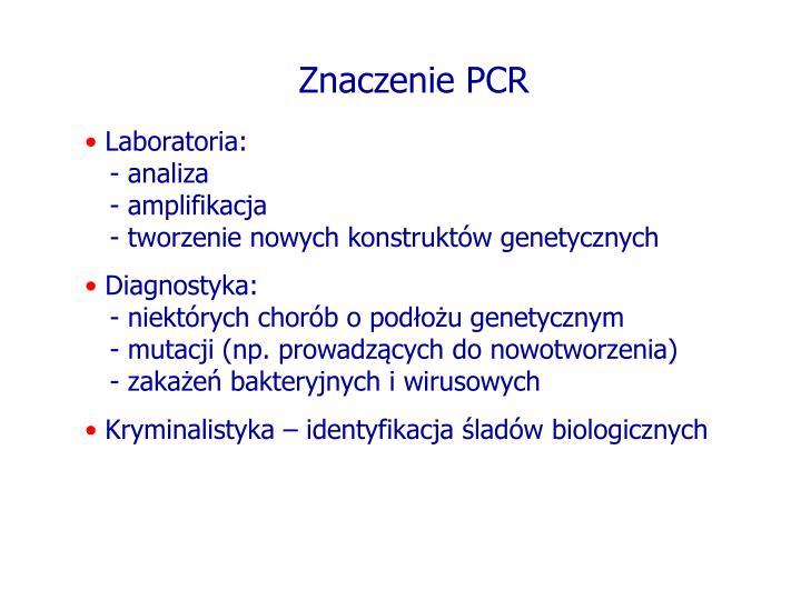Znaczenie PCR