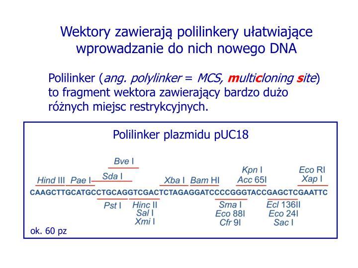 Wektory zawierają polilinkery ułatwiające wprowadzanie do nich nowego DNA