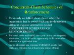 concurrent chain schedules of reinforcement