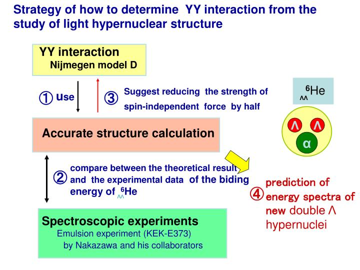Strategy of how to determine  YY interaction from the study of light hypernuclear structure