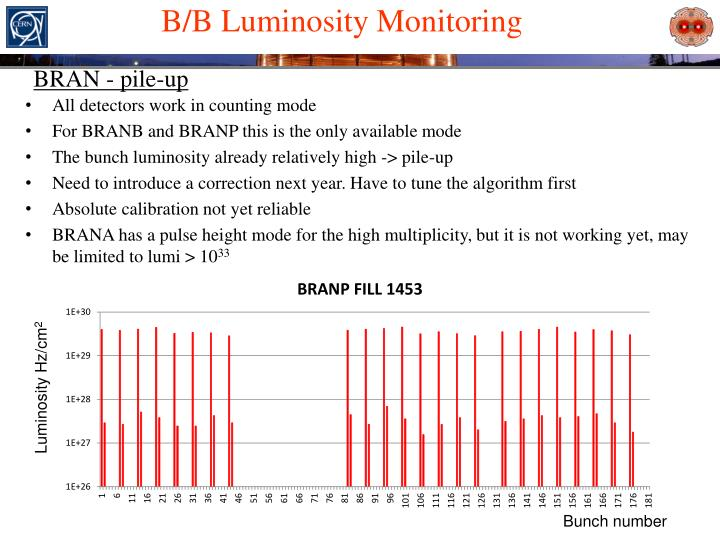 B/B Luminosity Monitoring