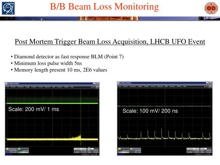 B/B Beam Loss Monitoring