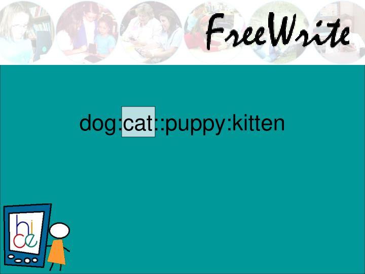 dog:cat::puppy:kitten