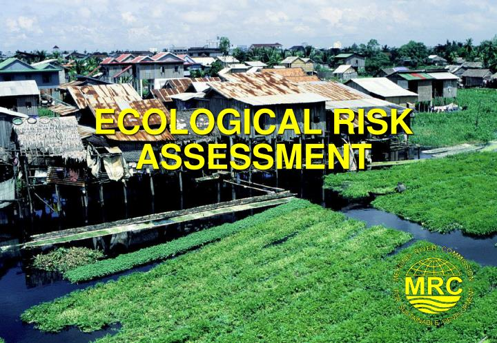 ecological risk assessment n.