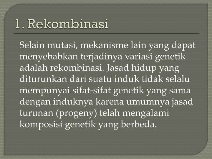 1 rekombinasi