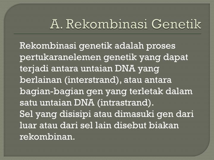 A rekombinasi genetik