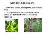 mendel s conclusions