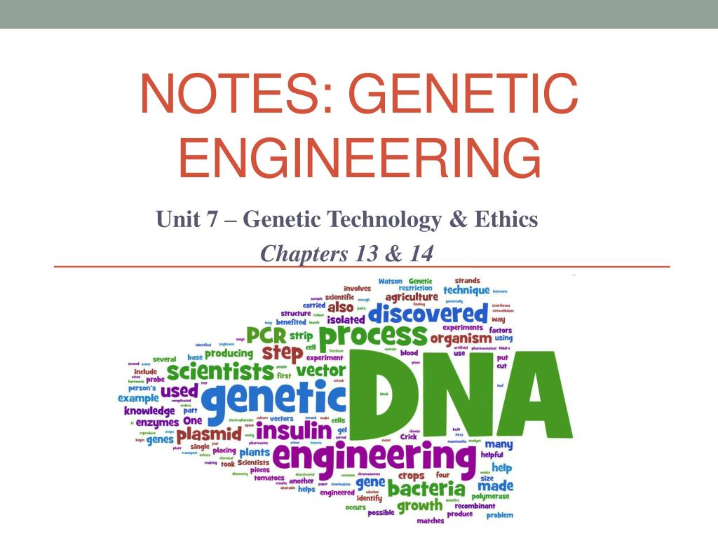PPT - NOTES: Genetic engineering PowerPoint Presentation