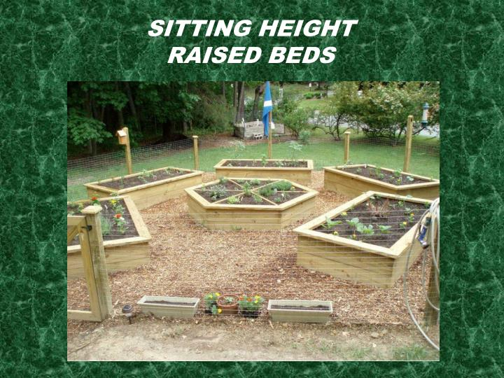 Sitting Height Raised Beds