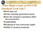 what might a suite of iso csr standards look like