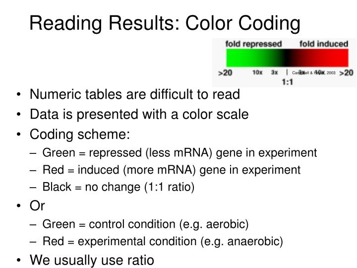 Reading Results: Color Coding