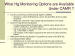 what hg monitoring options are available under camr